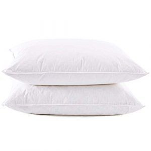 Premium White Goose Feather And Down Pillow Set