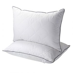 2 Pk Luxury Down Alternative Queen Pillows