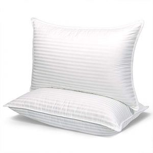 Dream Series Quality Pillows Queen Size